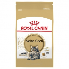 Royal Canin Maine Coon 31 4kg kassitoit