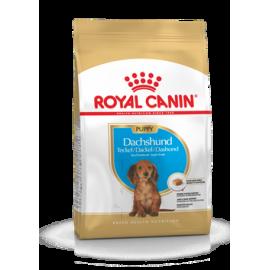 Royal Canin Dachshund 30 puppy 2x1,5kg koeratoit