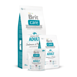 Brit Care ADULT SALMON & POTATO