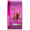 Eukanuba koeratoit Adult Weight Control Large Breed 15kg